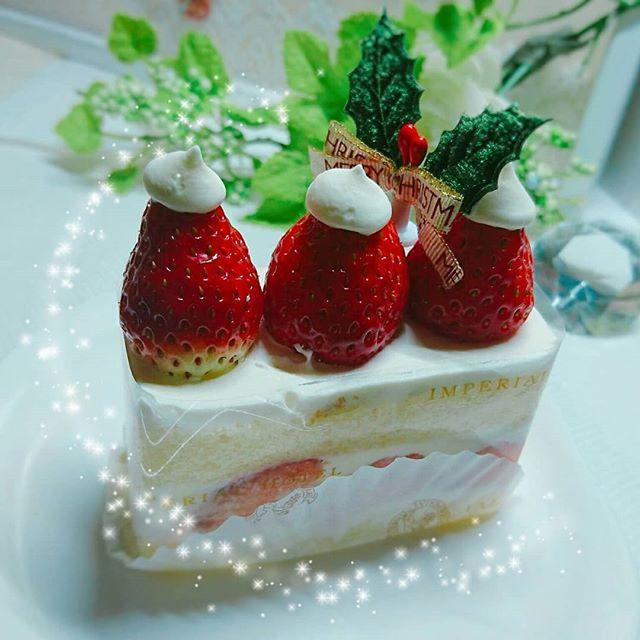 クリスマスが日曜日の為、お店がお休みです。なので早めのクリスマスケーキをみんなで頂きましたいつもの休憩時間が至福の一時でした週末、クリスマスですね。街中キラキラですてきです。皆さまも素敵なクリスマスをお過ごし下さい。#今ケーキ食べてやっともうすぐクリスマスだと実感#遅すぎ#でも間に合うよ#特になんの用事もないけれど#年末年始#ご予約込み合っております#ご予約はお早めに#SARAHネイル #サラネイル#美爪 #美肌 #美BODY#文京区 #小石川 #茗荷谷 #春日 #白山 #後楽園#文京区ネイル #茗荷谷ネイル#トータルビューティーサロンYOI #YOI #ヨイ